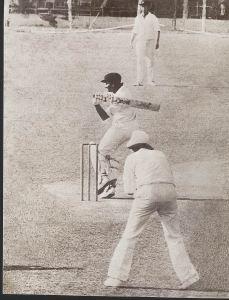 anura-t-batting